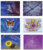 Personal Enrichment Poster Set - 6 Posters