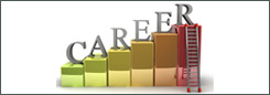 Career Exploration DVD Bundle (15 DVDs)